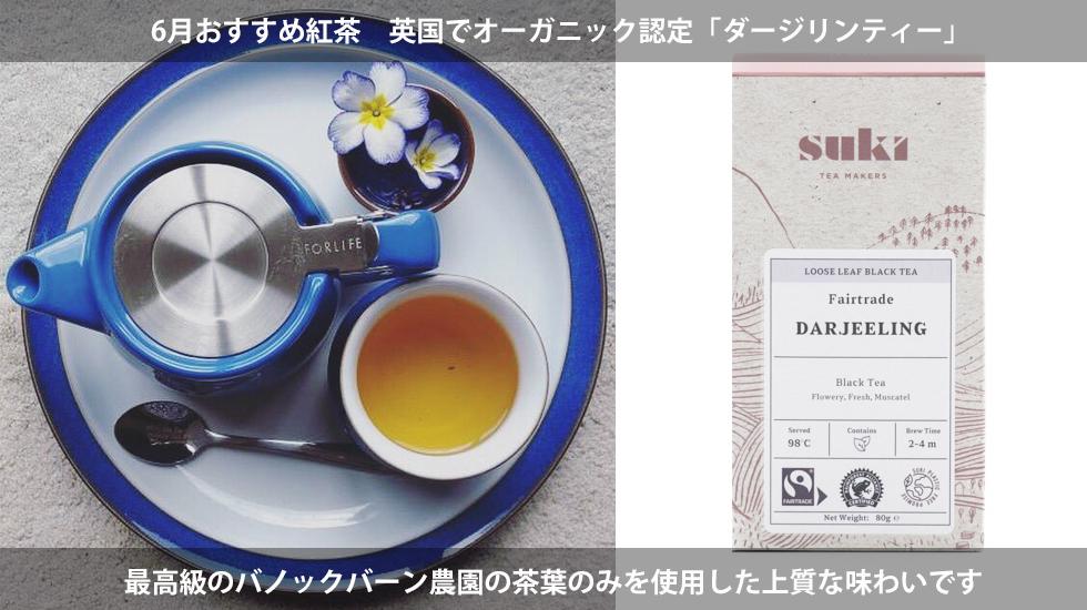 6月おすすめ紅茶「ダージリンティー」